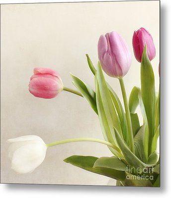 Tulips Metal Print by LHJB Photography