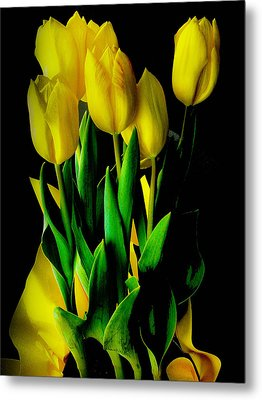 Metal Print featuring the photograph Tulips by Joseph Hollingsworth
