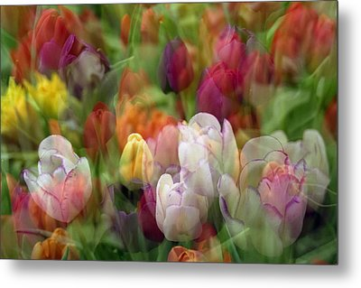 Tulips Metal Print by Penny Lisowski