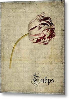 Tulips - S01bt2t Metal Print by Variance Collections