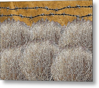 Tumbleweed And Barbed Wire Metal Print by Suzanne Powers
