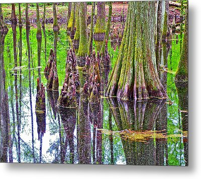 Tupelo/cypress Swamp Reflection At Mile 122 Of Natchez Trace Parkway-mississippi Metal Print by Ruth Hager