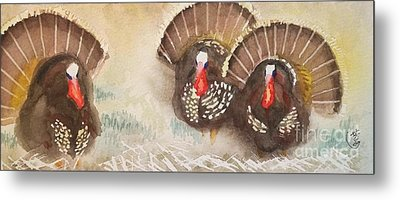 Turkeys Metal Print by Yoshiko Mishina