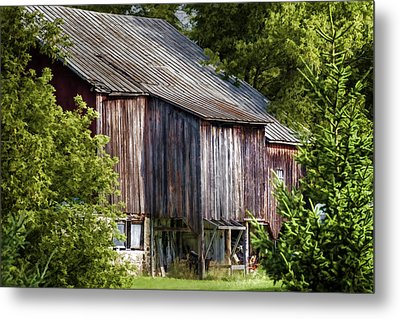 Turn Your Face To The Sun Metal Print by Joan Carroll