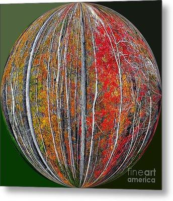 Turning Leaves Metal Print by Scott Cameron