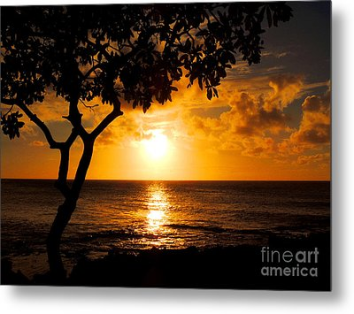 Turtle Bay Sunset Metal Print by Kristine Merc