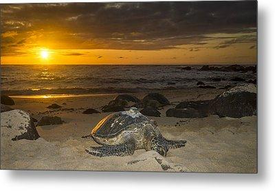 Turtle Beach Sunset Oahu Hawaii Metal Print by Jianghui Zhang