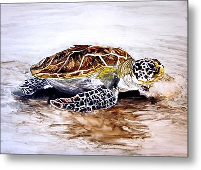 Turtle On The Beach Metal Print