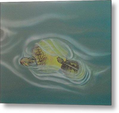 Turtle Pond Iv Metal Print