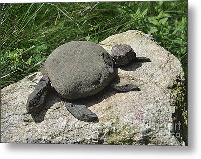 Turtle's Rock Metal Print