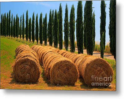 Tuscan Hay Metal Print by Inge Johnsson