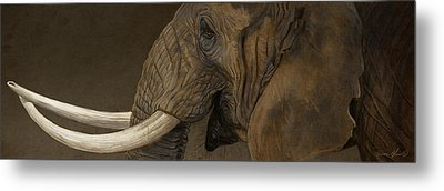 Tusker Metal Print by Aaron Blaise