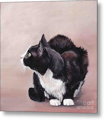 Tuxedo Cat Bird Watcher Metal Print by Charlotte Yealey
