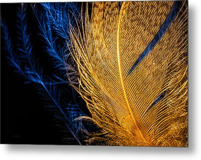 Metal Print featuring the photograph Tweety Bird by Bob Orsillo