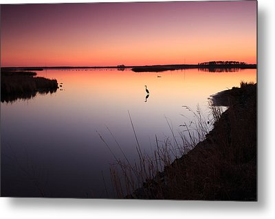 Metal Print featuring the photograph Twilight At Blackwater Wlr by Jennifer Casey