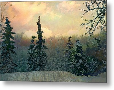 Twilight In The Forest Metal Print by Shirley Sirois