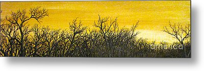 Twilight Partial Metal Print by Pheonix Creations