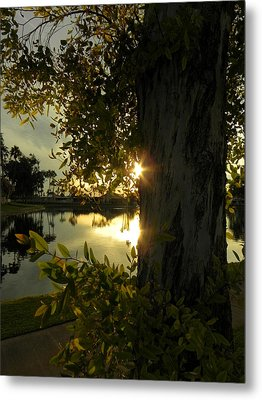 Metal Print featuring the photograph Twilight Splendor by Deb Halloran
