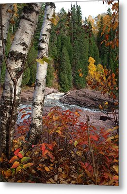 Twin Aspens Metal Print by James Peterson