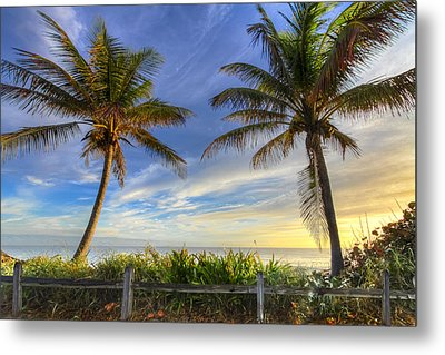 Twin Palms Metal Print by Debra and Dave Vanderlaan
