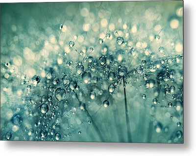 Metal Print featuring the photograph Twinkle In Blue II by Sharon Johnstone