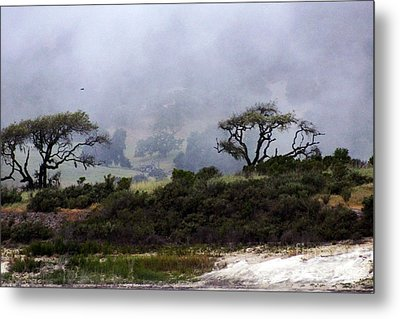 Metal Print featuring the photograph Twins In  The Fog by Gary Brandes