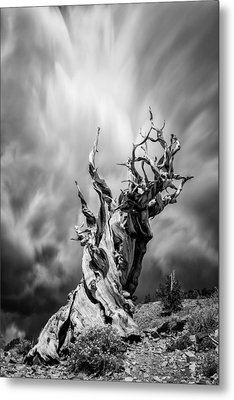 Twisted In Time Metal Print