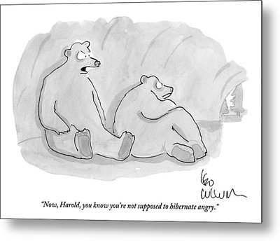 Two Bears In A Cave Metal Print