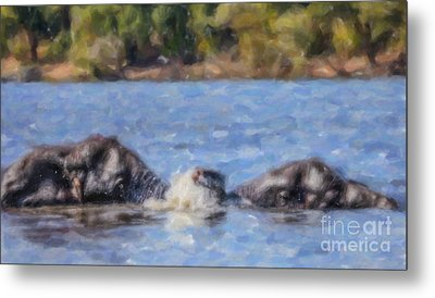 Two Elephants Playing In Chobe River Metal Print by Liz Leyden