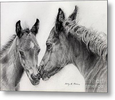 Two Foals Metal Print by Hailey E Herrera