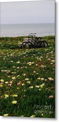 Metal Print featuring the photograph Two For The Road 2 by Theresa Ramos-DuVon