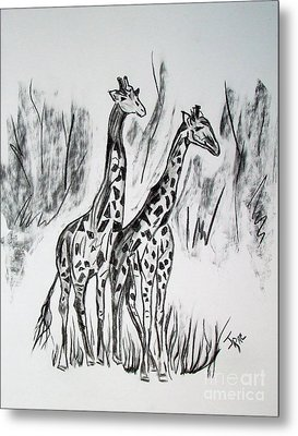 Metal Print featuring the drawing Two Giraffe's In Graphite by Janice Rae Pariza