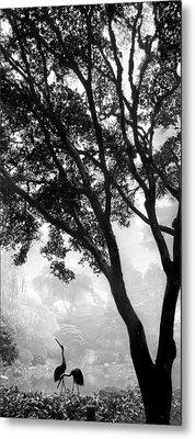 Two Heron - Black And White Metal Print by Lori Grimmett
