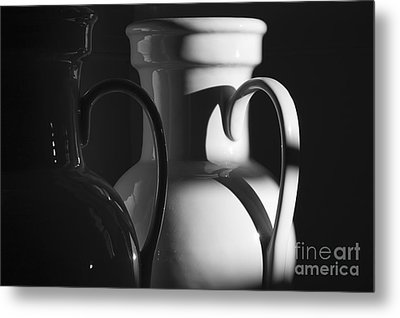 Two In Black And White Metal Print by Terry Rowe