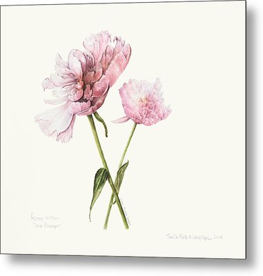 Two In Pink Metal Print