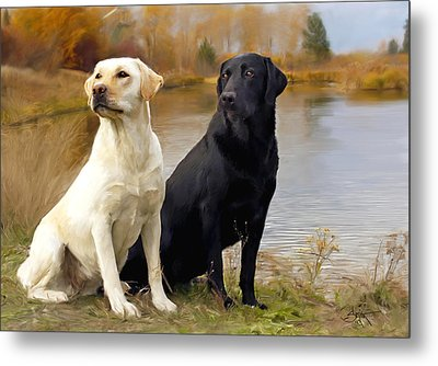 Two Labs Metal Print
