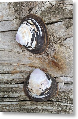 Two Metal Print by M West