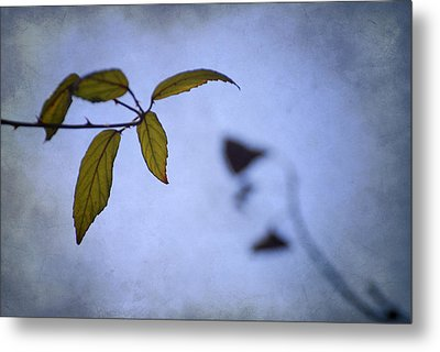 Two Monsters In The Shadows Metal Print by Guido Montanes Castillo