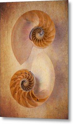 Two Nautilus Shells Metal Print