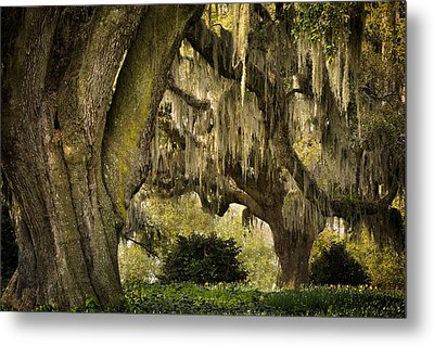Two Oaks Metal Print by Denis Lemay