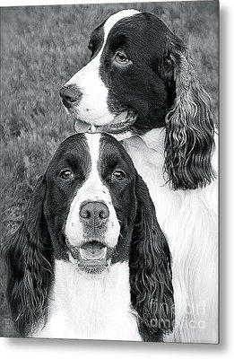 Metal Print featuring the photograph Two Of A Kind by Barbara Dudley