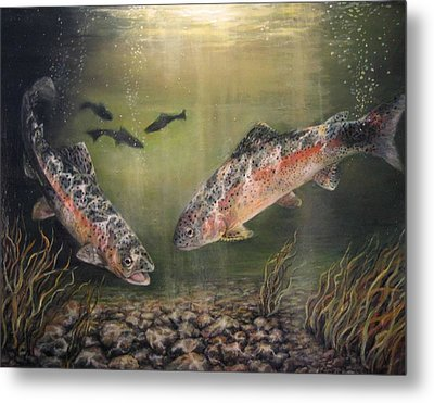 Two Rainbow Trout Metal Print by Donna Tucker
