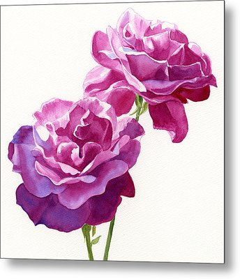 Two Red Violet Rose Blossoms Square Design Metal Print