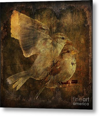 Two Sparrows Metal Print by Jim Wright