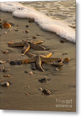 Metal Print featuring the photograph Two Stars by Carrie Cranwill