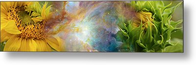 Two Sunflowers With Gaseous Nebula Metal Print by Panoramic Images