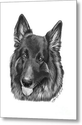 Metal Print featuring the drawing Tyson -038 by Abbey Noelle