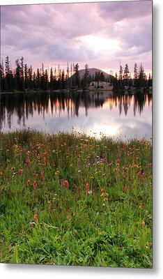 Uinta Wildflowers Metal Print by Johnny Adolphson