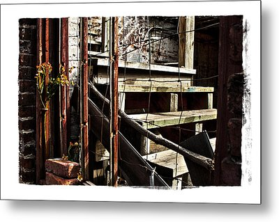 Uncommon Beauty Metal Print by Tanya Jacobson-Smith