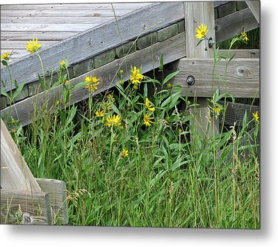 Metal Print featuring the photograph Under The Boardwalk by Laurel Powell